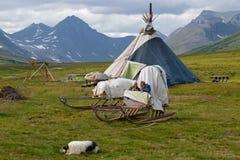 Khanty驯鹿交配动物者的孩子充当爬犁 库存图片