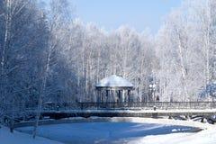 khanty mansiysk公园冬天 免版税库存照片
