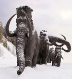 Sculptures of mammoths in Archeopark, Khanty - Mansiysk, Russia Located at the foot of glacial hill, Archeopark shows lifelike sta. Khanty - Mansiysk,Russia Stock Photography