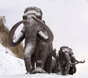 Sculptures of mammoths in Archeopark, Khanty - Mansiysk, Russia Located at the foot of glacial hill, Archeopark shows lifelike sta. Khanty - Mansiysk,Russia Stock Image