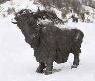Sculpture of a bull, Archeopark, Khanty - Mansiysk, Russia Located at the foot of glacial hill, Archeopark shows lifelike sta. Khanty - Mansiysk,Russia Stock Photos