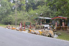 khao国家公园亚伊 图库摄影