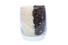 Khao Hom Nil or Black Fragrant Rice mix with Fragrant Rice in glass Stock Photography