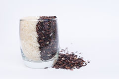 Khao Hom Nil or Black Fragrant Rice mix with Fragrant Rice in glass Royalty Free Stock Image