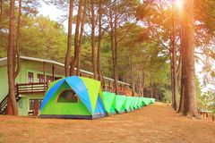 Khao Kho Phetchabun in thailand,morning in forest pine wiht travel adventure and camping stock photography