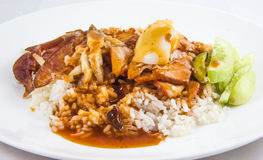 Khao Moo Daeng (rice with roasted red pork) Stock Images