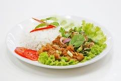 Khao nam tok kai thai food. Hot and spicy Stock Image