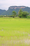 Khao Raeng Mountain Royalty Free Stock Photo