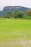 Khao Raeng Mountain Royalty Free Stock Photography