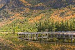 Khao Sam Roi Yot National Park. Lake in Khao Sam Roi Yot National Park, Prachuap Khiri Khan Province, Thailand Royalty Free Stock Photo