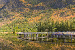 Khao SAM Roi Yot Nationale Park Royalty-vrije Stock Foto
