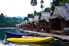 Khao Sok Royalty Free Stock Images