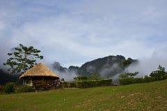 Khao-sok im Nebel Lizenzfreies Stockbild