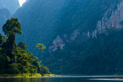 Khao Sok National Park. Royalty Free Stock Photography
