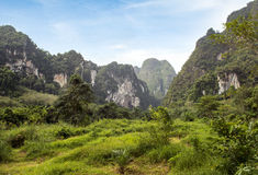 Khao Sok National Park Stock Images
