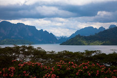 Khao Sok National Park at pointview Stock Photo