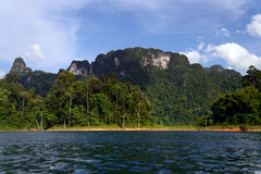 Khao Sok National Park. Thailand. Stock Photo