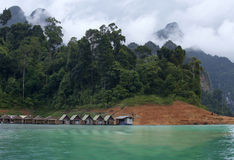 Khao sok nature park Royalty Free Stock Image