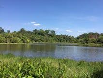 Khao Yai Nationalpark Stockbilder