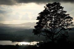KhaoKho widoku punkt [Samotny drzewo] obraz stock