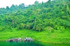 khaosok natura Thailand Fotografia Stock