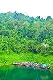 khaosok natura Thailand Obraz Stock