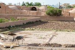 Kharanaq stock afbeeldingen
