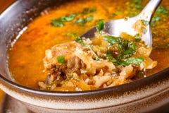 Kharcho Carne y sopa de verduras georgianas picantes Foto de archivo libre de regalías