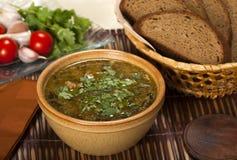 Kharcho. Georgian Beef-Walnut Soup. Georgian Beef-Walnut Soup with fresh herbs royalty free stock image