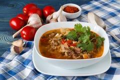 Kharcho georgiano caldo della minestra di cucina con l'agnello immagine stock libera da diritti