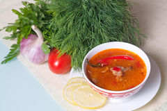 Kharcho polewka słuzyć z warzywami i zielenią Zdjęcie Royalty Free