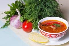 Kharcho polewka słuzyć z warzywami i zielenią Zdjęcie Stock