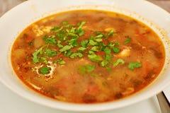 Kharcho soppa med kött och royaltyfria foton