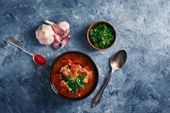Kharcho soup - national Georgian cuisine dish with beef, rice, garlic and tkemali. Traditional authentic Caucasian food. Kharcho soup - national Georgian cuisine royalty free stock image