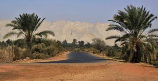 Kharga-Oase, die Straße mit Dattelpalmen und Berge Stockbilder