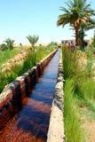 Kharga Oasis Royalty Free Stock Photos