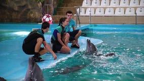 Kharkiv, de Oekraïne - 19 Nov., 2017: Instructeurs en dolfijnen in dolphinarium stock videobeelden