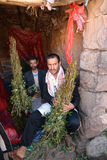 Khat dealer. YEMEN � MARCH 14: Two unidentified men wait customer to sale fresh Khat in Sanaa region on March 14, 2010. Catha Edulis (Khat) contains the Royalty Free Stock Images