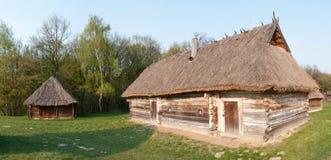 Khat ucraniano Fotos de Stock Royalty Free