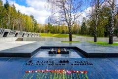 Khatyn Pamiątkowe Powikłane róże fotografia royalty free