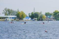 Kherson, de Oekraïne, 30,2014 September de concurrentie van het roeien sporten Stock Foto's