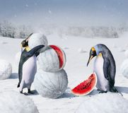 Kherson vinter Royaltyfri Fotografi