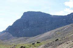 khibiny βουνά Στοκ Φωτογραφίες