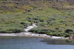 Khibiny Massif. Mountain stream in the mountains of Khibiny Stock Photography