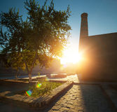 Khiva Stock Afbeeldingen