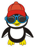 Kühler Pinguinjunge Stockfotografie