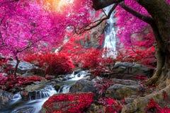 Khlong Lan瀑布是美丽的瀑布在雨林密林泰国 免版税库存照片