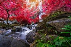 Khlong Lan瀑布是美丽的瀑布在雨林密林泰国 库存图片