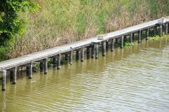 Khlong Preng kanal i landet Chachoengsao Thailand royaltyfri fotografi