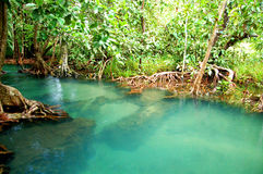 KHLONG SONG NAM. Stream fingerprint of the Krabi province stock photos